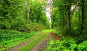 Randonnée Marche LONGPONT - en forêt de Retz_57_Longpont_Saint-Pierre Aigle_AR - Photo 55