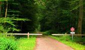 Randonnée Marche LONGPONT - en forêt de Retz_57_Longpont_Saint-Pierre Aigle_AR - Photo 97