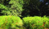 Randonnée Marche LONGPONT - en forêt de Retz_57_Longpont_Saint-Pierre Aigle_AR - Photo 90