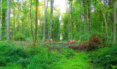 Randonnée Marche LONGPONT - en forêt de Retz_57_Longpont_Saint-Pierre Aigle_AR - Photo 12