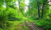 Randonnée Marche LONGPONT - en forêt de Retz_57_Longpont_Saint-Pierre Aigle_AR - Photo 39