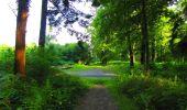 Randonnée Marche LONGPONT - en forêt de Retz_57_Longpont_Saint-Pierre Aigle_AR - Photo 2