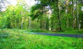 Randonnée Marche LONGPONT - en forêt de Retz_57_Longpont_Saint-Pierre Aigle_AR - Photo 10