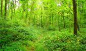 Randonnée Marche LONGPONT - en forêt de Retz_57_Longpont_Saint-Pierre Aigle_AR - Photo 54