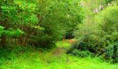 Randonnée Marche LONGPONT - en forêt de Retz_57_Longpont_Saint-Pierre Aigle_AR - Photo 82