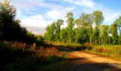 Randonnée Marche LONGPONT - en forêt de Retz_57_Longpont_Saint-Pierre Aigle_AR - Photo 26