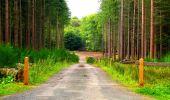 Randonnée Marche LONGPONT - en forêt de Retz_57_Longpont_Saint-Pierre Aigle_AR - Photo 78