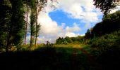 Randonnée Marche LONGPONT - en forêt de Retz_57_Longpont_Saint-Pierre Aigle_AR - Photo 80