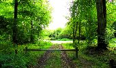 Randonnée Marche LONGPONT - en forêt de Retz_57_Longpont_Saint-Pierre Aigle_AR - Photo 95
