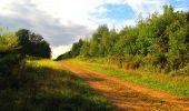 Randonnée Marche LONGPONT - en forêt de Retz_57_Longpont_Saint-Pierre Aigle_AR - Photo 30