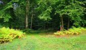 Randonnée Marche LONGPONT - en forêt de Retz_57_Longpont_Saint-Pierre Aigle_AR - Photo 38