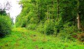 Randonnée Marche LONGPONT - en forêt de Retz_57_Longpont_Saint-Pierre Aigle_AR - Photo 67