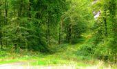 Randonnée Marche LONGPONT - en forêt de Retz_57_Longpont_Saint-Pierre Aigle_AR - Photo 110
