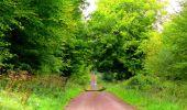 Randonnée Marche LONGPONT - en forêt de Retz_57_Longpont_Saint-Pierre Aigle_AR - Photo 83