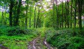 Randonnée Marche LONGPONT - en forêt de Retz_57_Longpont_Saint-Pierre Aigle_AR - Photo 40