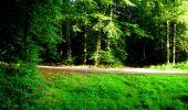 Randonnée Marche LONGPONT - en forêt de Retz_57_Longpont_Saint-Pierre Aigle_AR - Photo 6