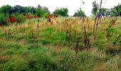 Randonnée Marche LONGPONT - en forêt de Retz_57_Longpont_Saint-Pierre Aigle_AR - Photo 85
