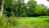 Randonnée Marche LONGPONT - en forêt de Retz_57_Longpont_Saint-Pierre Aigle_AR - Photo 66
