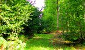 Randonnée Marche LONGPONT - en forêt de Retz_57_Longpont_Saint-Pierre Aigle_AR - Photo 100