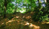 Randonnée Marche LONGPONT - en forêt de Retz_57_Longpont_Saint-Pierre Aigle_AR - Photo 91