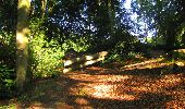 Randonnée Marche LONGPONT - en forêt de Retz_57_Longpont_Saint-Pierre Aigle_AR - Photo 89