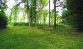 Randonnée Marche LONGPONT - en forêt de Retz_57_Longpont_Saint-Pierre Aigle_AR - Photo 5