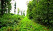 Randonnée Marche LONGPONT - en forêt de Retz_57_Longpont_Saint-Pierre Aigle_AR - Photo 68