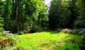 Randonnée Marche LONGPONT - en forêt de Retz_57_Longpont_Saint-Pierre Aigle_AR - Photo 99