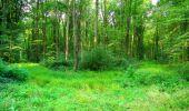 Randonnée Marche LONGPONT - en forêt de Retz_57_Longpont_Saint-Pierre Aigle_AR - Photo 11