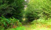 Randonnée Marche LONGPONT - en forêt de Retz_57_Longpont_Saint-Pierre Aigle_AR - Photo 102