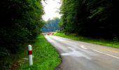 Randonnée Marche LONGPONT - en forêt de Retz_57_Longpont_Saint-Pierre Aigle_AR - Photo 77