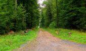 Randonnée Marche LONGPONT - en forêt de Retz_57_Longpont_Saint-Pierre Aigle_AR - Photo 61