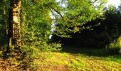 Randonnée Marche LONGPONT - en forêt de Retz_57_Longpont_Saint-Pierre Aigle_AR - Photo 107