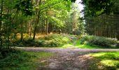 Randonnée Marche LONGPONT - en forêt de Retz_57_Longpont_Saint-Pierre Aigle_AR - Photo 103