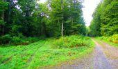 Randonnée Marche LONGPONT - en forêt de Retz_57_Longpont_Saint-Pierre Aigle_AR - Photo 37