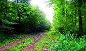 Randonnée Marche LONGPONT - en forêt de Retz_57_Longpont_Saint-Pierre Aigle_AR - Photo 33