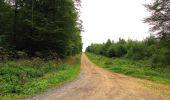 Randonnée Marche LONGPONT - en forêt de Retz_57_Longpont_Saint-Pierre Aigle_AR - Photo 62