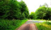 Randonnée Marche LONGPONT - en forêt de Retz_57_Longpont_Saint-Pierre Aigle_AR - Photo 81