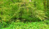Randonnée Marche LONGPONT - en forêt de Retz_57_Longpont_Saint-Pierre Aigle_AR - Photo 56