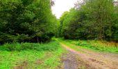 Randonnée Marche LONGPONT - en forêt de Retz_57_Longpont_Saint-Pierre Aigle_AR - Photo 63