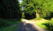 Randonnée Marche LONGPONT - en forêt de Retz_57_Longpont_Saint-Pierre Aigle_AR - Photo 105