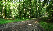 Randonnée Marche LONGPONT - en forêt de Retz_57_Longpont_Saint-Pierre Aigle_AR - Photo 93
