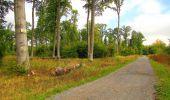Randonnée Marche LONGPONT - en forêt de Retz_57_Longpont_Saint-Pierre Aigle_AR - Photo 72