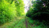 Randonnée Marche LONGPONT - en forêt de Retz_57_Longpont_Saint-Pierre Aigle_AR - Photo 31