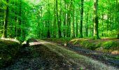 Randonnée Marche LONGPONT - en forêt de Retz_57_Longpont_Saint-Pierre Aigle_AR - Photo 94