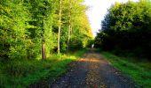 Randonnée Marche LONGPONT - en forêt de Retz_57_Longpont_Saint-Pierre Aigle_AR - Photo 18