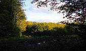 Randonnée Marche LONGPONT - en forêt de Retz_57_Longpont_Saint-Pierre Aigle_AR - Photo 14