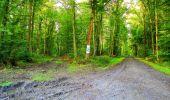 Randonnée Marche LONGPONT - en forêt de Retz_57_Longpont_Saint-Pierre Aigle_AR - Photo 16