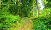 Randonnée Marche LONGPONT - en forêt de Retz_57_Longpont_Saint-Pierre Aigle_AR - Photo 41