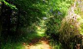 Randonnée Marche LONGPONT - en forêt de Retz_57_Longpont_Saint-Pierre Aigle_AR - Photo 45